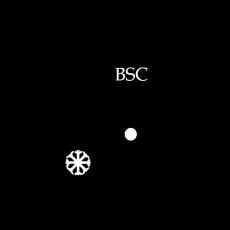 BSC Logo neu